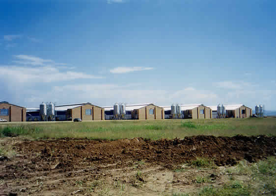 Cattle Farms For Salechicken Farms For Salepig Farms For